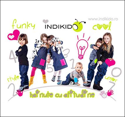 indikido1